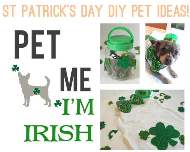 St-Patricks-Day-DIY-Pet-Ideas-via-IrresistiblePets.net_