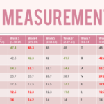 Week 11 Weight Loss Measurements and Progress Pictures