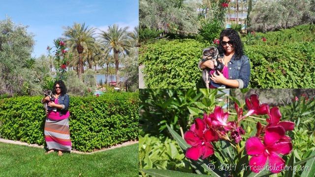 BlogPaws Westin Las Vegas Pink Skirt OOTD