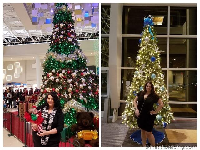 Christmas Tree Weight Loss Progress 2017