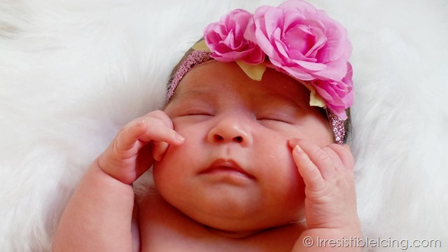 Catalina Rose - Mom Blogger